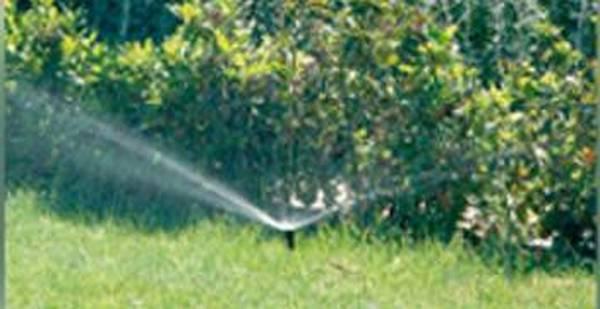 système d arrosage automatique jardin