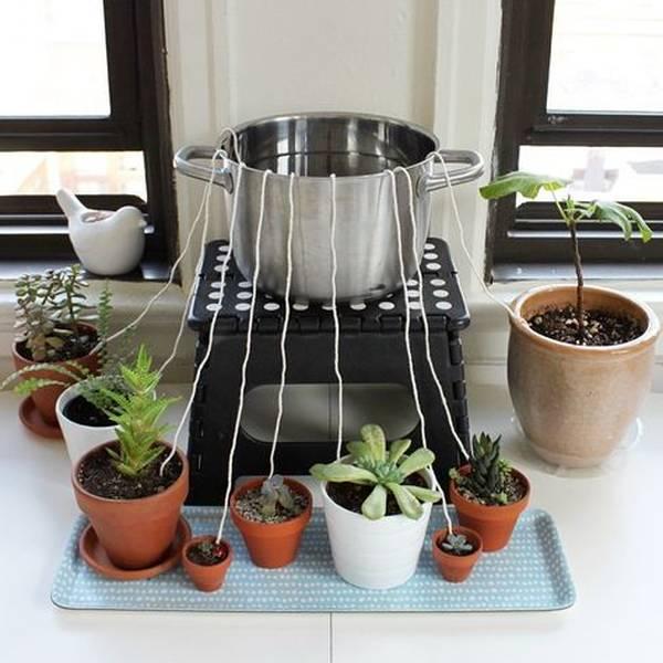 arrosage automatique plantes d intérieur